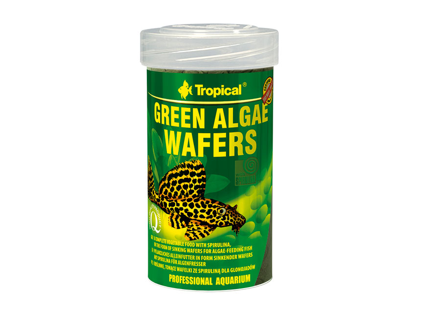 Green Algae Wafers 100ml